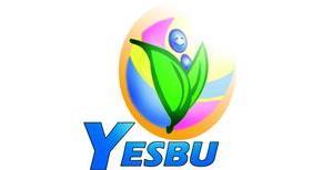 برنامج شباب من أجل بيئة مستدامة وفهم أفضل