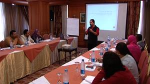 Building Perceptions and Developing Capacities in the Egyptian Cultural Fields - The 2nd Workshop (Aswan)