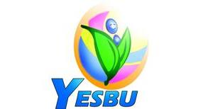 Youth for Environmental Sustainability and Better Understanding (YESBU)