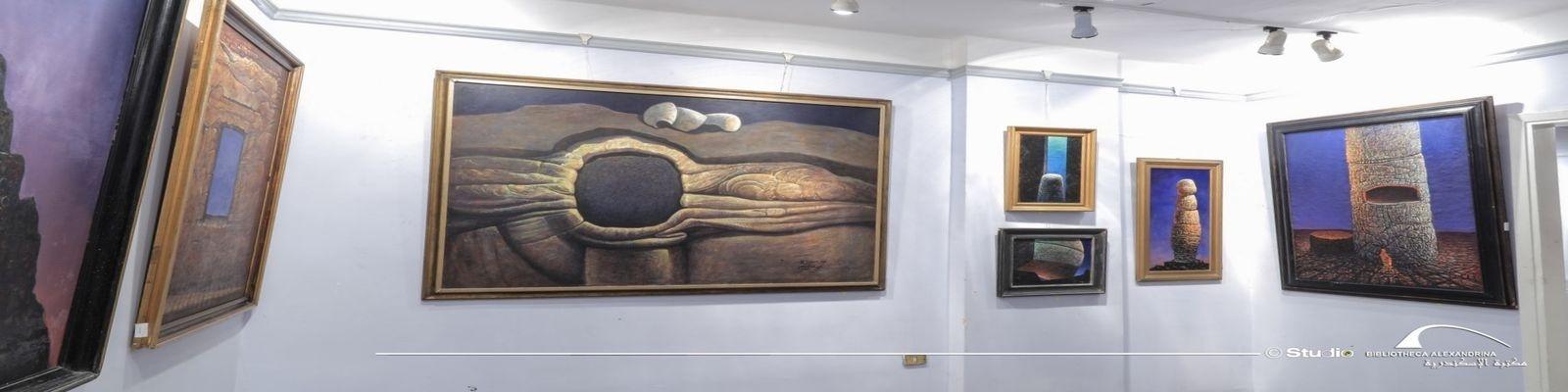 فتح مقر متحف الفنان محمد شاكر